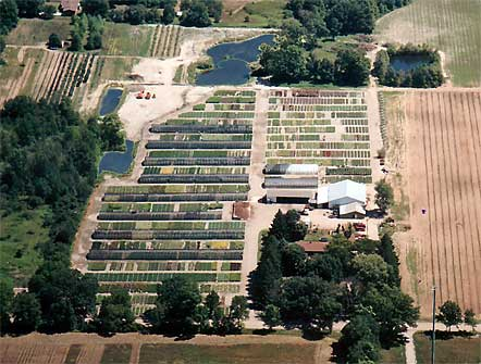Northfield Farms Inc company